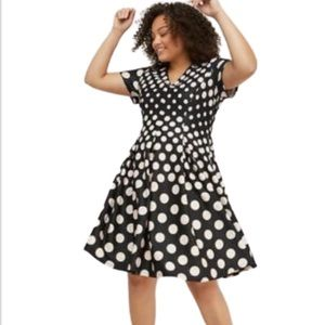 Lane Bryant Polka Dot Fit and Flare Scuba Dress